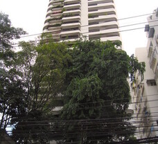 Orchid Tower