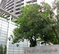 The Aetas Residence